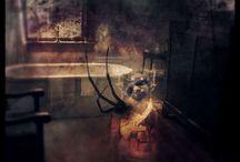 Bryce Edsall Nightmare / Bryce Edsall Manipulates Pictures in Nightmare-Inducing Ways