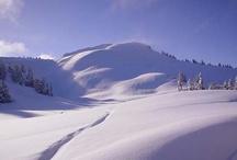 Winter Wonderland / by Sunshine Coast Tourism, BC