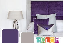 Purples / by CertaPro Painters®