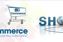 BigCommerce Development / Potenza Global Solutions Provides a Complete Solution for Big-commerce Store Design and Development Services to make your online store more customized.