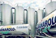 Emilia-Romagna all'Expo: cibo e non solo