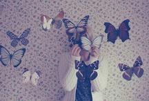 Papillons/Butterflies