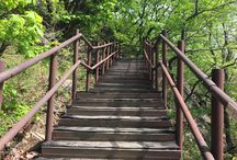 Bring It On Trail Run Wooden Stairs2 / 가파른 나무 계단 (A Steep Wooden Stairs) GPS: 37.632545 126.977684 고도(Altitude): 589m