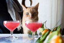 Cats & Food
