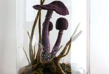 Inspiração -  Cogumelos