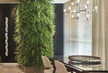 plantas na decor