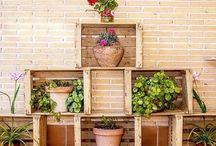 Plantas y Jardin