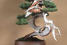 Bonsai & Ikebana