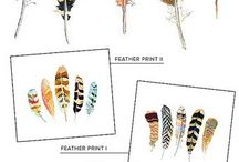 Feathers / Inspirational images of feathers