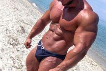 Hot Bulge