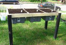 Veggie Garden Bed Ideas