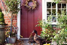 The Doors / front doors