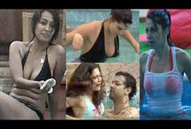 Top Five Bikini Babes of Bigg Boss