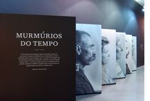 exhibitions / museography