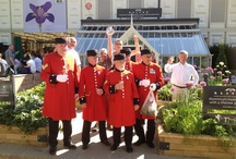 Alitex at Chelsea Flower Show / We have been exhibiting at RHS Chelsea Flower show for over 50 years. Times have changed! Here are some of our high points and favourite moments. http://www.alitex.co.uk/gallery/?id=6