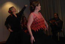 Flamenco Nederland / Flamenco