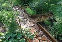 Future garden??