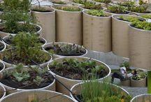 alternative gardens
