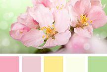 watercolor flowers / bloemen