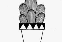 Quadros cactus
