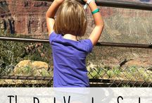 Family Travel Destinations / Great family travel destinations. The best road trips vacations to take with kids. www.thetypicalmom.com