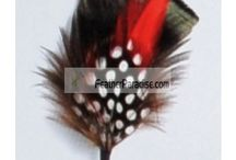 Feather Hat Pin / by Feather Paradise