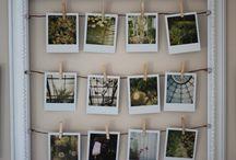 Identity - Polaroids