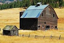 barns / by Pat Livengood