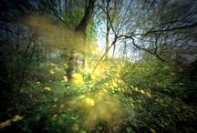 Pinhole Photography / Vega inspiration