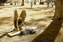 Weeping Angels / The Grief is terrible and beautiful to behold. / by Sheryl Gilbertson