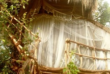 """Saraii Village Tree House / Saraii Village Tree House - A Real """"Tree House"""""""