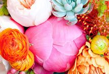 Flowers / Our favorite flower inspirations