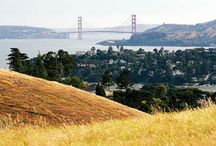 California Here I Come / by Trish Saylor