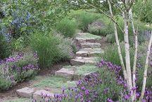 Garden&Landscape