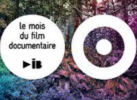 11 NOVEMBRE en Gironde / Evénements annuels en Gironde en octobre