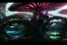 Mushroom Concepts