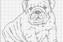 Charts/graphs - animals