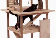 Cat house, tower, play area