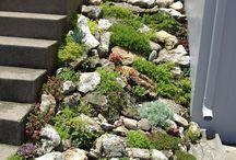 Rock & Inclined - Garden