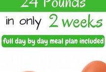 program diet plan