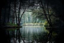 paisatges / by sio lluna