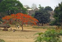 Africa/ Guinea, Guinea Bissau