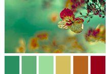 Colores MiniMercado