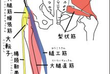 タイマッサージ学(椎間板ヘルニア)