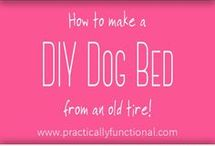 DIY's for dogs
