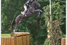 Eventing / Everything Eventing