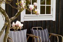 Wooden windows trim