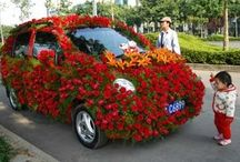 Flowers and Cars / Two great tastes that go great together!