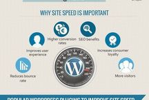Wordpress / All things Wordpress in INFOGRAPHIC illustrations explained.