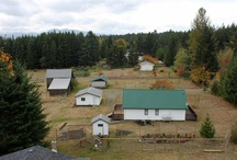 Farm & Acreage Property / by Michele Bosley